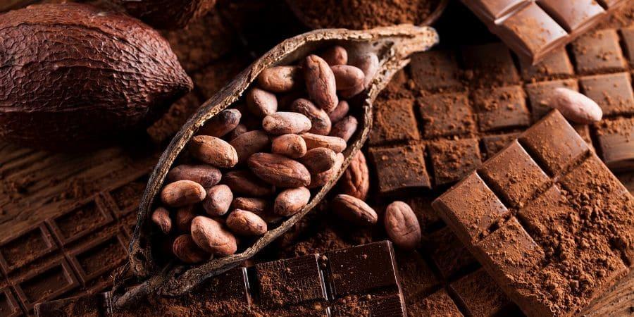 Benefici del cacao