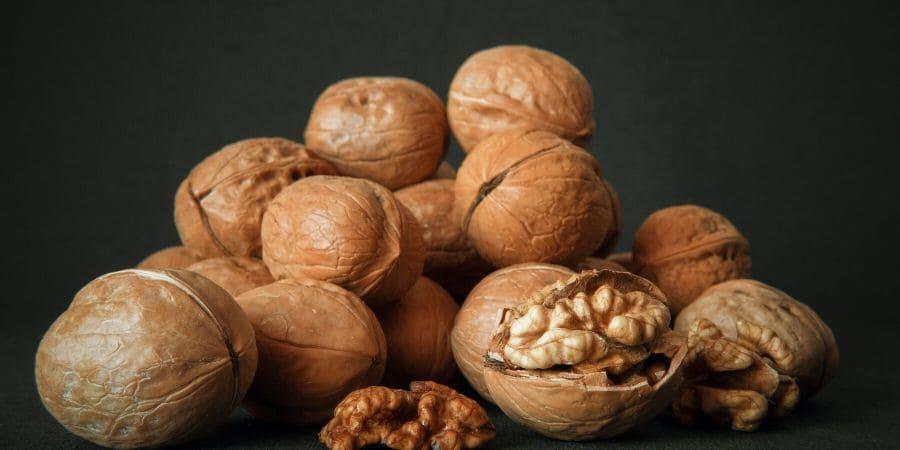 Frutta secca e noci per il cervello: fanno bene?